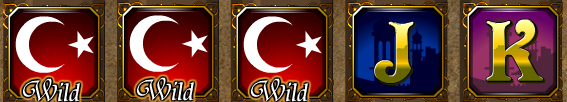 turkish_nights_wild
